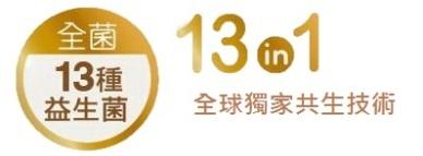 13in1_1
